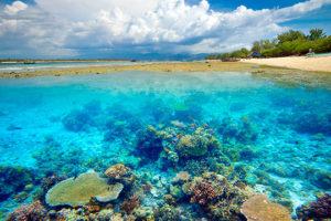 viaje-indonesia-indo13