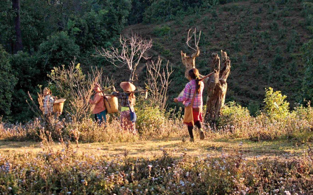 Los 5 mejores trekkings en Asia para este verano 2019