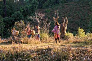 ftrek hsipaw,myanmar,Indika Viajes en Asia.,